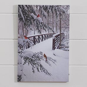 Snowy Bridge LED Print