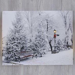 Park Bench in Winter LED Print