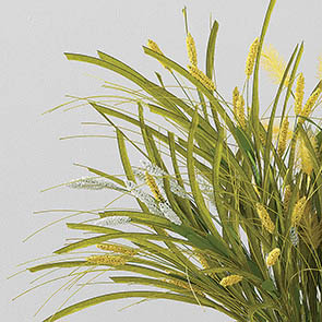 Meadow Grass Stem Set, Yellow