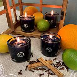 Autumn Bliss Jar Candle Set/4